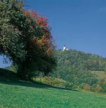 Slemško nad Vačami