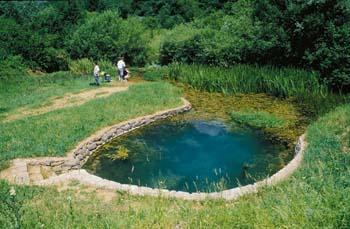 Povirje Lahinje - oaza Bele krajine