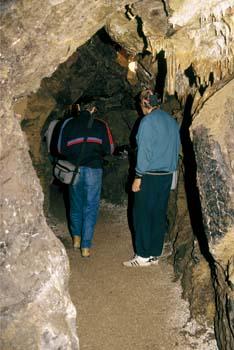 Rotovnikova jama