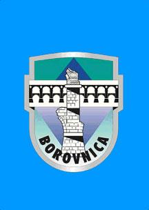 Borovnica  - zastava