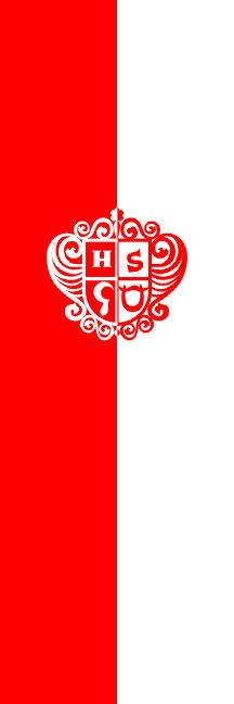 Braslovče - zastava