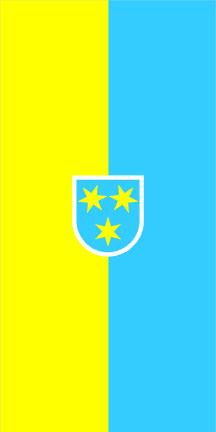 Celje - zastava