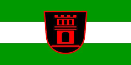 Črnomelj - zastava