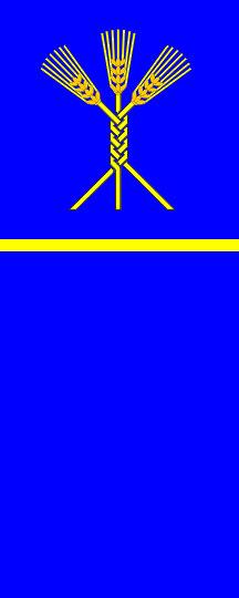 Domžale - zastava
