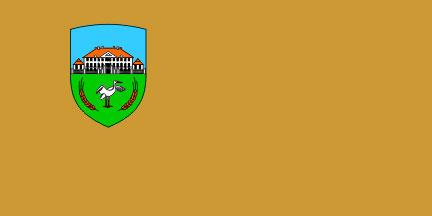 Dornava - zastava