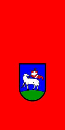 Dravograd - zastava