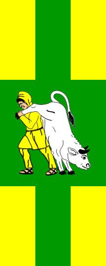 Hajdina - zastava