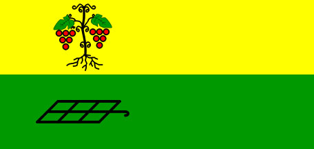 Juršinci - zastava