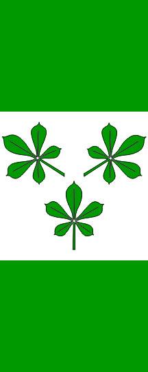 Kidričevo - zastava