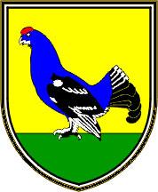 Kranjska Gora - grb