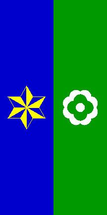 Mislinja - zastava