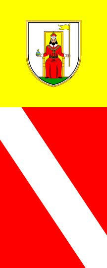 Novo mesto - zastava