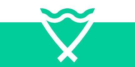 Osilnica - zastava