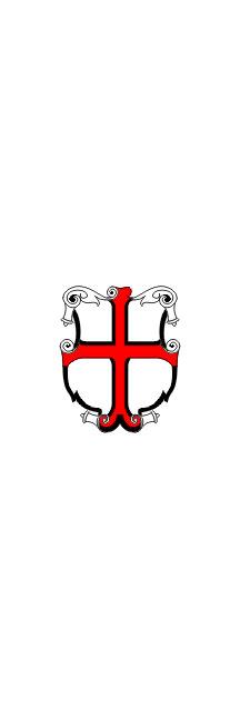 Ptuj - zastava