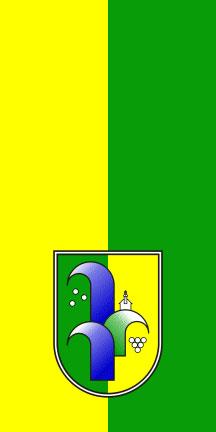 Radenci - zastava