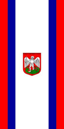 Radlje ob Dravi - zastava