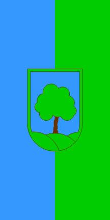 Ravne na Koroškem - zastava