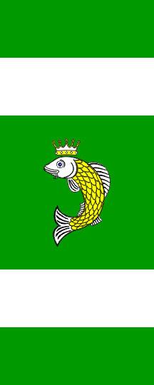 Ribnica na Pohorju - zastava