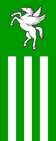 Rogaška Slatina - zastava