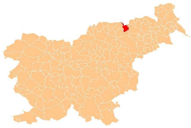 Selnica ob Dravi - karta