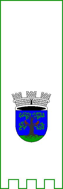 Sevnica - zastava