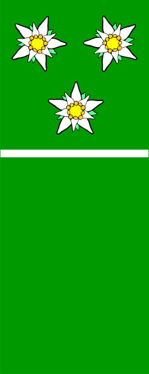 Solčava - zastava