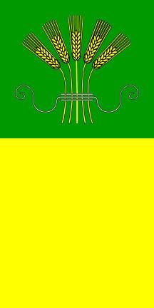 Starše - zastava