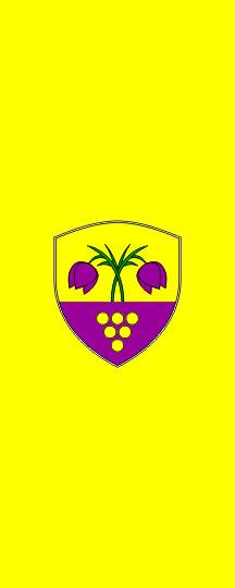 Trnovska vas - zastava