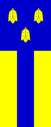 Žiri - zastava