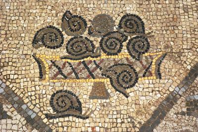 Oglej – košček mozaika pričakovanja