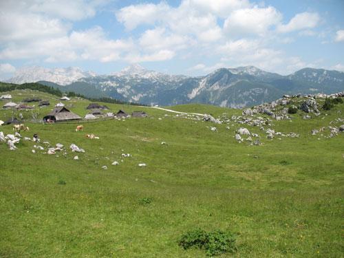 etno kmetije velika planina proti ojstrici Preskarjeva bajta na Veliki planini