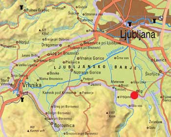 Ljubljansko barje - Pungart