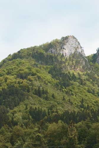 nasadruzina ajdna 01 Ajdna nad Potoki - zatočišče za preživetje