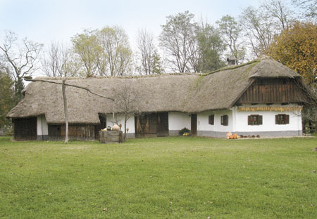 Dominkova hiša