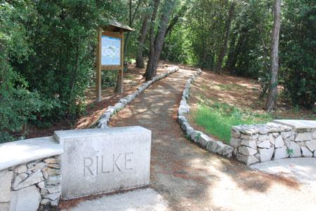 Devin Rilke