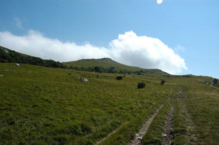 Pod Grmado (1207 m)