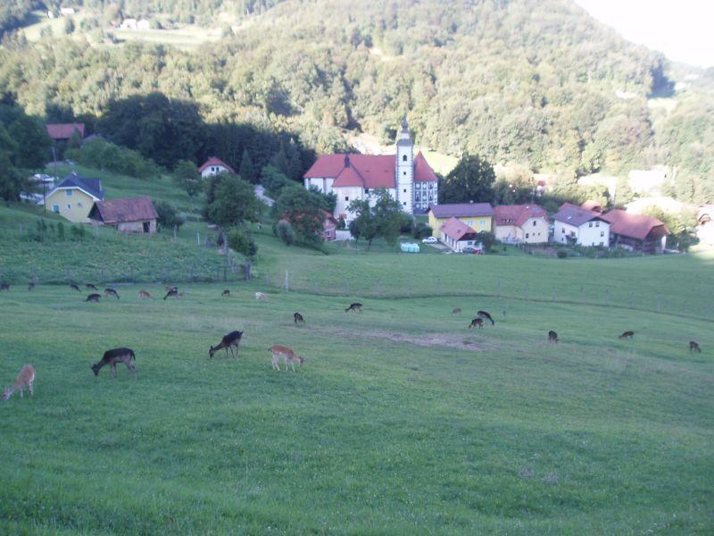 izlet olimje jelenov greben