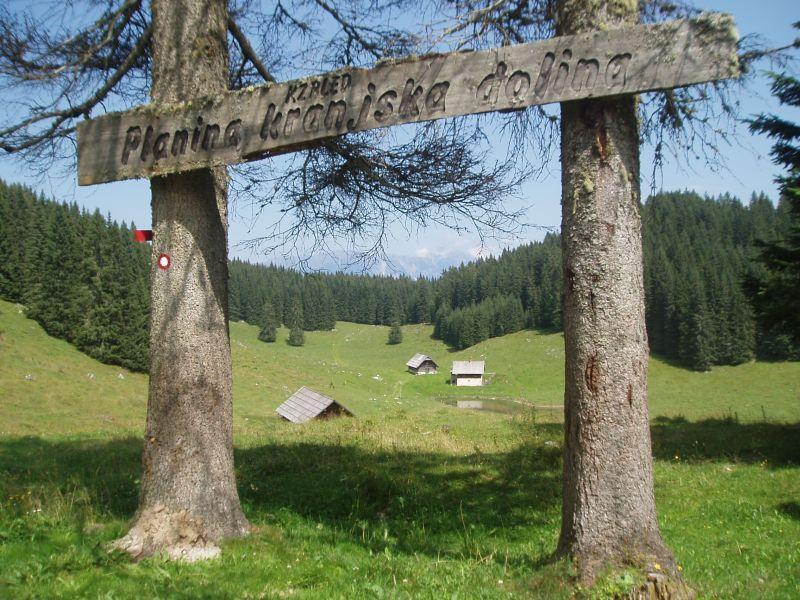 Pokljuka Kranjska dolina