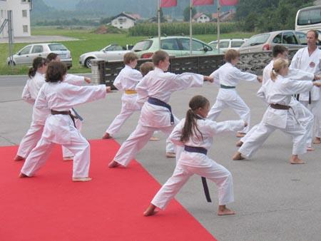 blogi 380 Krona karate klub domzale Domžalska Krona