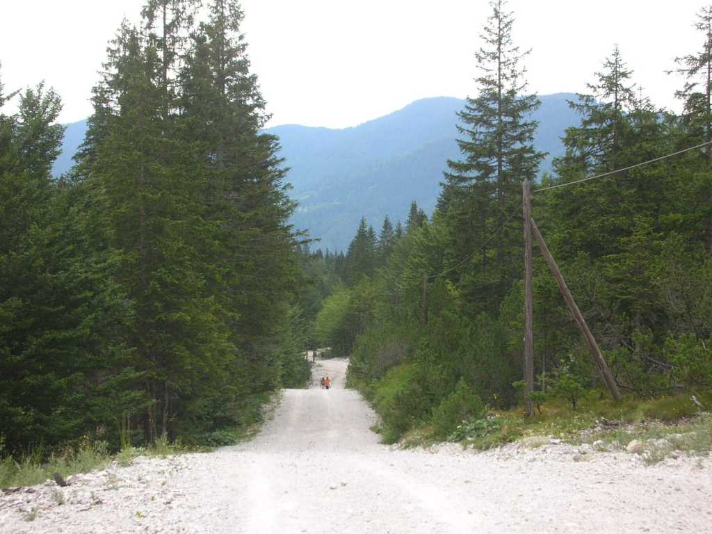Pot v Tamar