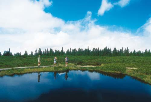 blogi 80 Pohorje Lovrensko jezero Zakaj ne na vzhod?