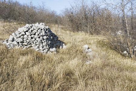 Gradišca - varuhinja Kraškega roba