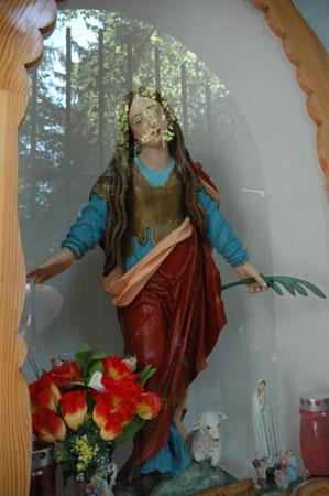 Kip sv. Neže
