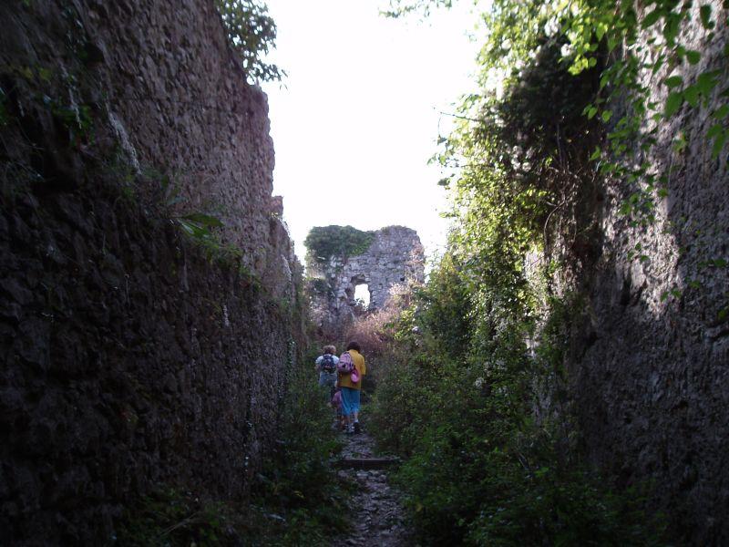 Stari Grad Kamnik ruševine
