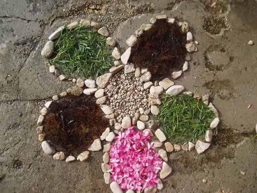 blogi 129 pinesta pineta mozaik roza Zdravstvena kolonija Pineta - Pinesta Novigrad