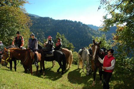 Pot tudi za konjenike