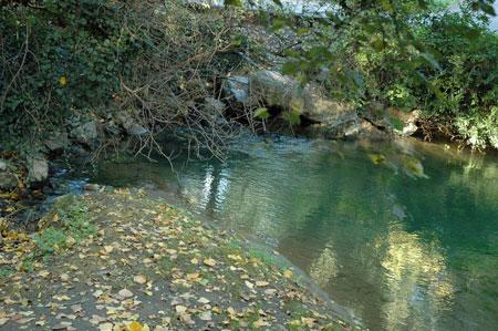 Ob izviru reke Timave
