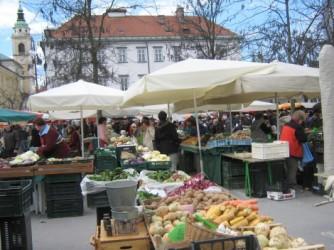 blogi 420 ljubljana 238 Vodnikov trg