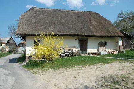 Domačija pri Češnjevcu na Goričicah (565m). Vas leži nad zatokom v vzhodnem delu Cerkniškega polja.