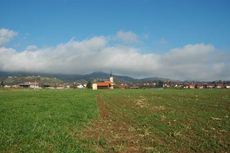 Pogled na Šentrupert z Šentruperskega polja